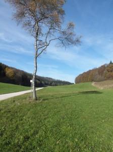 Eva Eckstein Radtour Lonsinger Tal